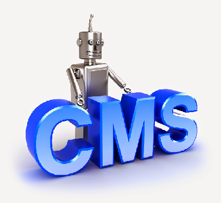 CMS untuk Toko Online